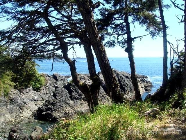 #StartLivingInUkee oceanfront Judy Gray